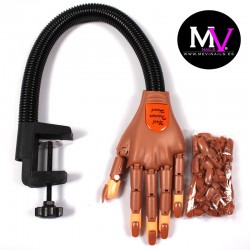 Mano de Practica manicura articulada